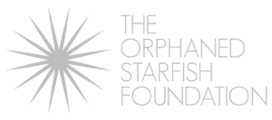 Orphaned Starfish